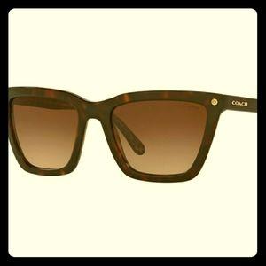 Coach Brown tortoise square Sunglasses (like new)